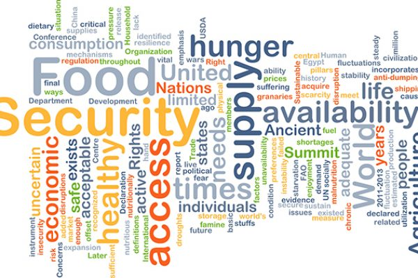Background concept wordcloud illustration of food security